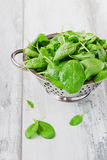 Wet sorrel leaves. In a colander on the old wooden background. health and diet food stock image
