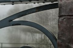 Wet spiderweb on a metal railing. Wet spiderweb with water drops on a metal railing, rainy day Stock Images