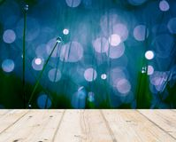 Wet springtime grass with bokeh effect and wooden floor Royalty Free Stock Photos