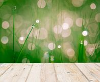 Wet springtime grass with bokeh effect and wooden floor Royalty Free Stock Image