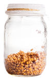 Wet Sprouting Weat Seeds in a Glass Jar Stock Photos