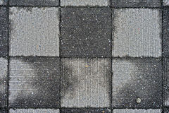 Wet square concrete block patter. / abstract background Stock Photography