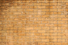 Wet stain brick wall Royalty Free Stock Image