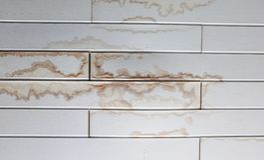 Wet stain. Of rain on polypropylene panels ceiling Stock Image