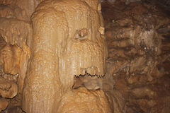Wet stone. In the grotto. Cave in the New Afone Stock Photography