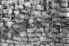 Wet stone brick wall of monochrome tone Stock Image