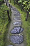 Wet stone pathway. Between wooden fence and mossy forest ground Stock Photos