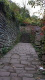 Wet stone pathway in Germany city Heidelberg garden by autumn. Secret passage in the garden Royalty Free Stock Photos