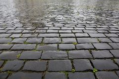 Wet stone pavement texture Royalty Free Stock Images