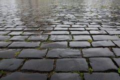 Wet stone pavement texture Stock Photography