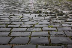 Wet stone pavement texture Royalty Free Stock Photo