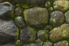 Wet stone rock with moss green nature