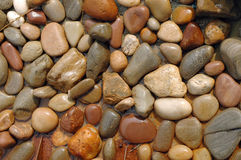 Wet stones. Collection of wet stones of various sizes Royalty Free Stock Images