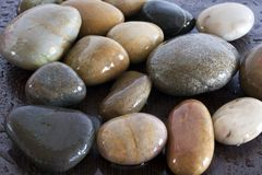 Wet stones. On wenge background Royalty Free Stock Photography