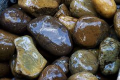 Wet Stones Stock Photos