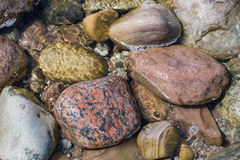 Wet stones background. Colorful various wet stones in water Royalty Free Stock Images