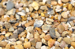 Wet stones on the beach Stock Images