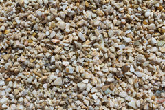 Wet stones on a beach. Texture Royalty Free Stock Photos