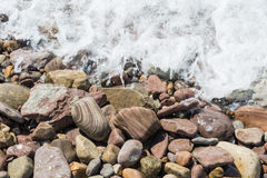Wet stones with foaming water. Wet stones at waters edge with foaming water wave Royalty Free Stock Image