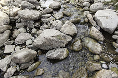 Wet stones in a river. Detail of boulders, nature vector illustration
