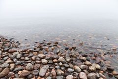 Wet stones on Saimaa lake coast Royalty Free Stock Photography