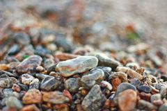 Wet stones on sea beach Royalty Free Stock Photos