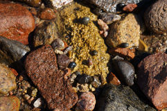 Wet stones and snails. Near the sea, selective focus Royalty Free Stock Photos