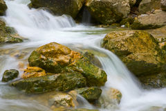 Wet stones in stream Stock Images