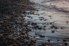 Wet Stones. On a sunset beach Stock Photos