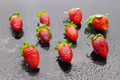 Wet strawberries Stock Images