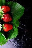 Wet strawberry with leaves on black background. Top view. Copy space. royalty free stock image