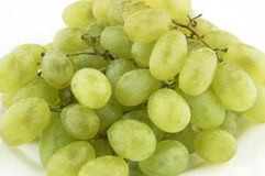 Wet sweet grapes Stock Photography