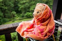 Wet teddy bear Dranik sitting in balcony Royalty Free Stock Images