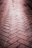 Wet tile stone way Stock Photo