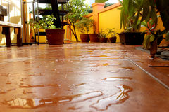 Wet Tiled Patio