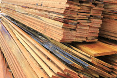 Wet timber stack Stock Photos