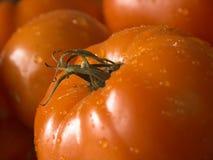 Wet tomato#2. Wet tomato close up,shallow dof Royalty Free Stock Image