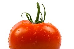Wet tomato. Close-up of wet fresh tomato isolated on white with clipping path included Royalty Free Stock Images