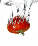 Wet tomato. Tomato falen in water Royalty Free Stock Image