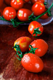 Wet tomatoes Stock Images