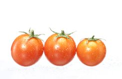 Wet tomatoes. Royalty Free Stock Photo