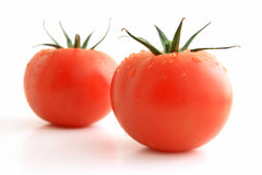 Wet tomatoes Royalty Free Stock Image