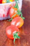Wet tomatoes closeup Royalty Free Stock Image