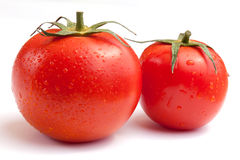Wet Tomatoes. Two fresh ripe red wet tomatoes on white Royalty Free Stock Photos