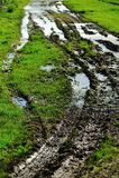Wet track Stock Image