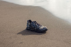 Wet trainer with seashells on the sandy beach Royalty Free Stock Image
