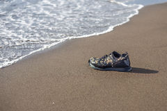 Wet trainer with seashells on the sandy beach Stock Photography