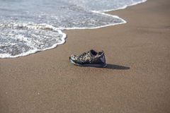 Wet trainer with seashells on the sandy beach Stock Images