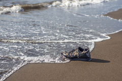 Wet trainer with seashells on the sandy beach Stock Image
