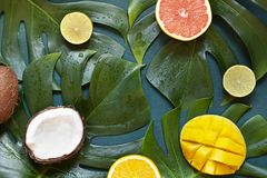 Wet Tropical leaves summer concept frame with citrus fruits on the wooden dark background. Top view stock photography